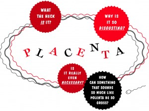 placenta main graphic